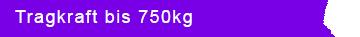 Laufschiene Tragkraft 750kg